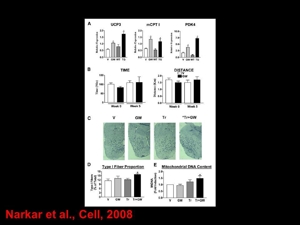 Narkar et al., Cell, 2008