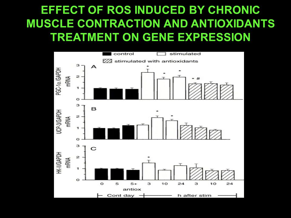 EFFECT OF ROS INDUCED BY CHRONIC MUSCLE CONTRACTION AND ANTIOXIDANTS TREATMENT ON GENE EXPRESSION