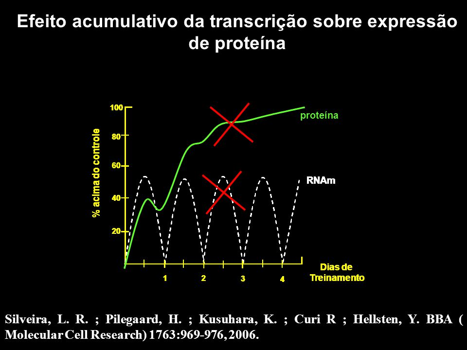 Efeito acumulativo da transcrição sobre expressão de proteína