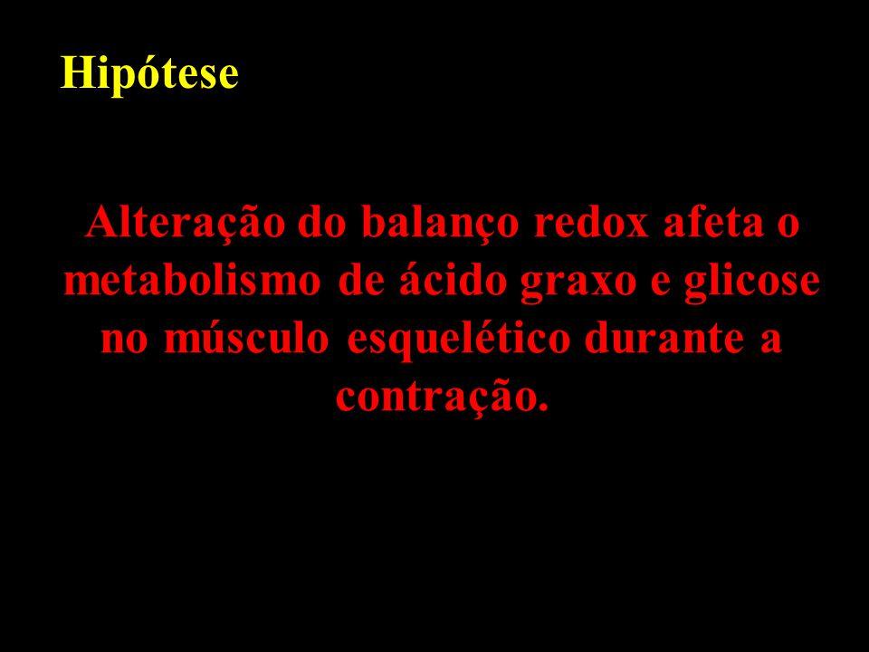 Hipótese Alteração do balanço redox afeta o metabolismo de ácido graxo e glicose no músculo esquelético durante a contração.