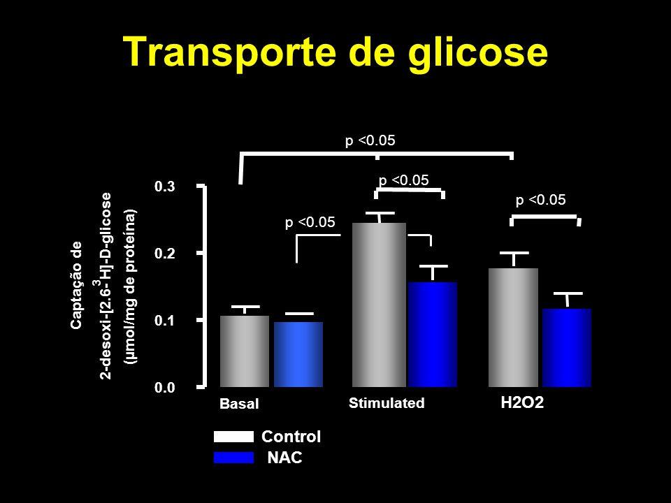 Transporte de glicose H2O2 Control NAC p <0.05 p <0.05 0.3