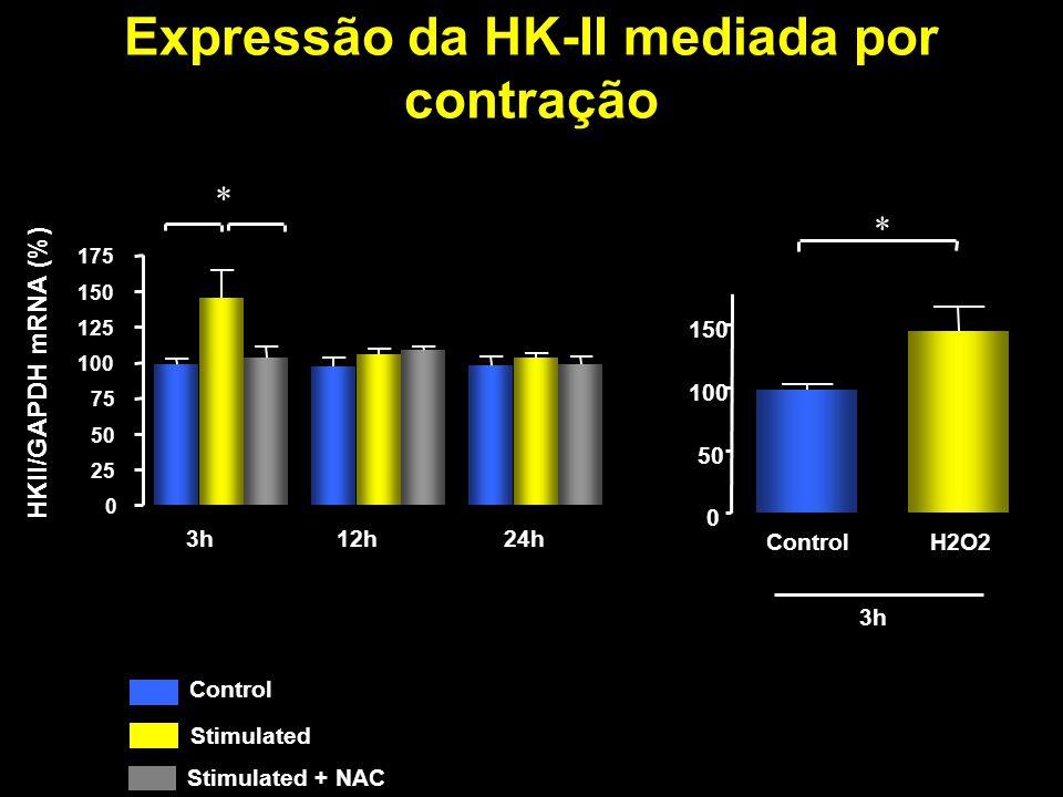 Expressão da HK-II mediada por contração