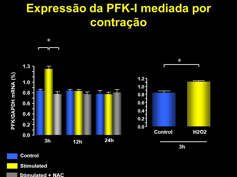 Expressão da PFK-I mediada por contração