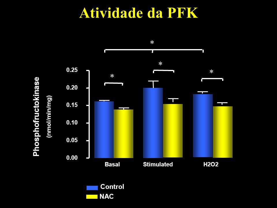 Atividade da PFK * Phosphofructokinase Control NAC (nmol/min/mg) 0.00