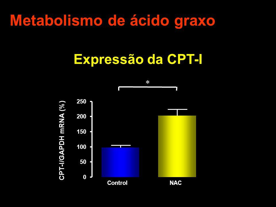 Metabolismo de ácido graxo