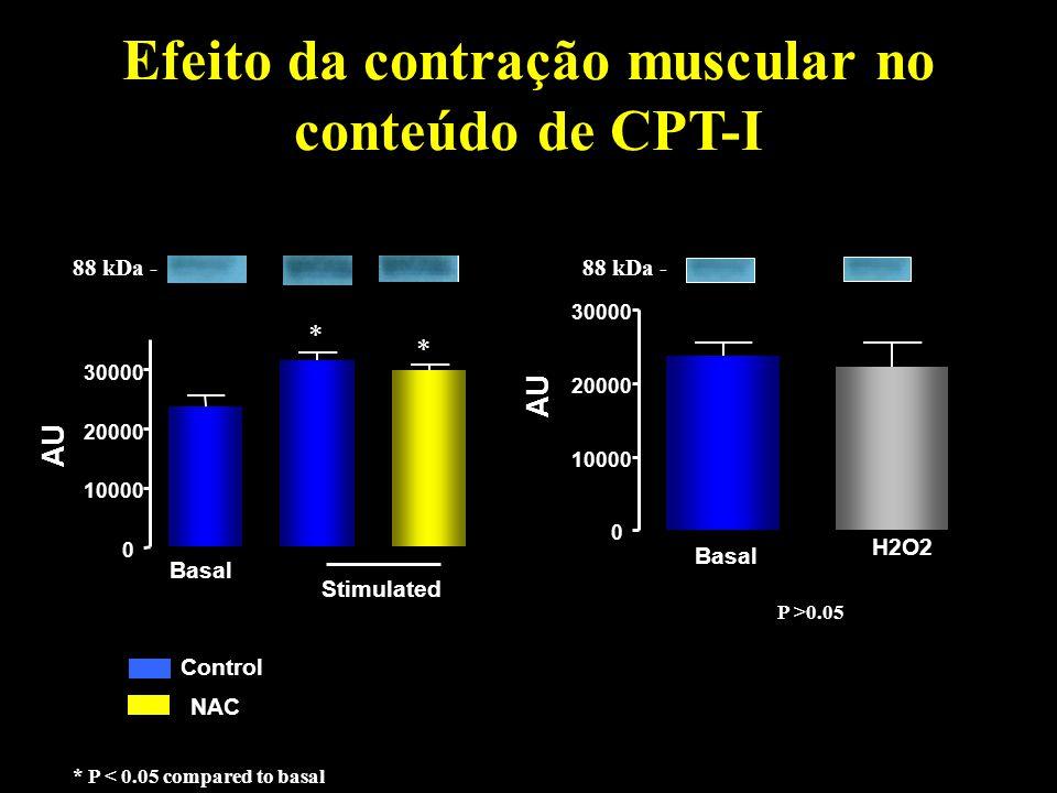 Efeito da contração muscular no conteúdo de CPT-I