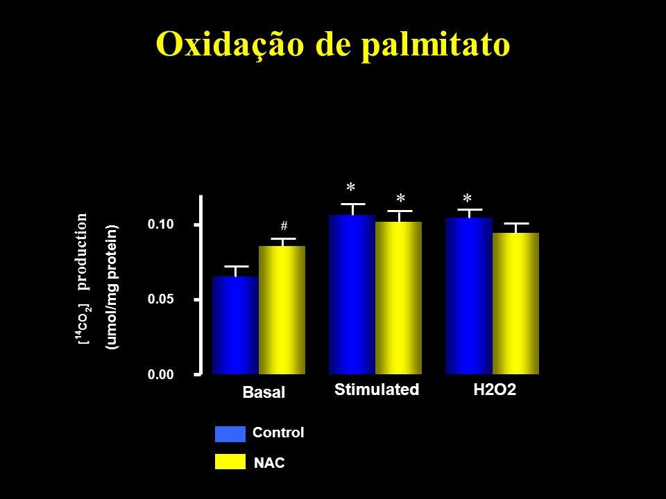 Oxidação de palmitato * * * production Stimulated H2O2 Basal