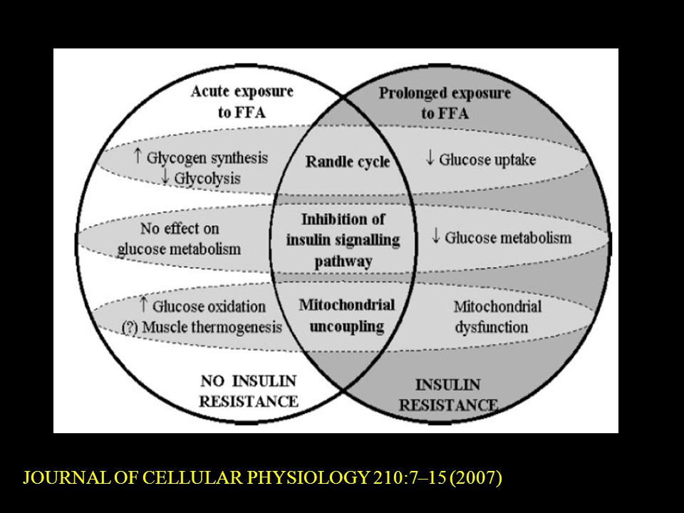 JOURNAL OF CELLULAR PHYSIOLOGY 210:7–15 (2007)