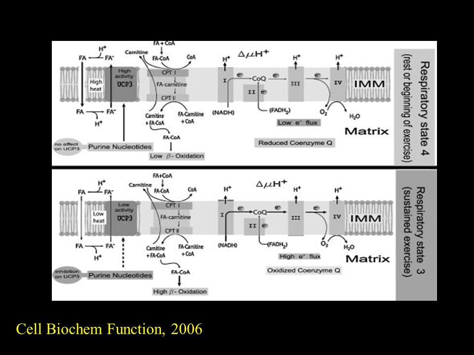 Cell Biochem Function, 2006