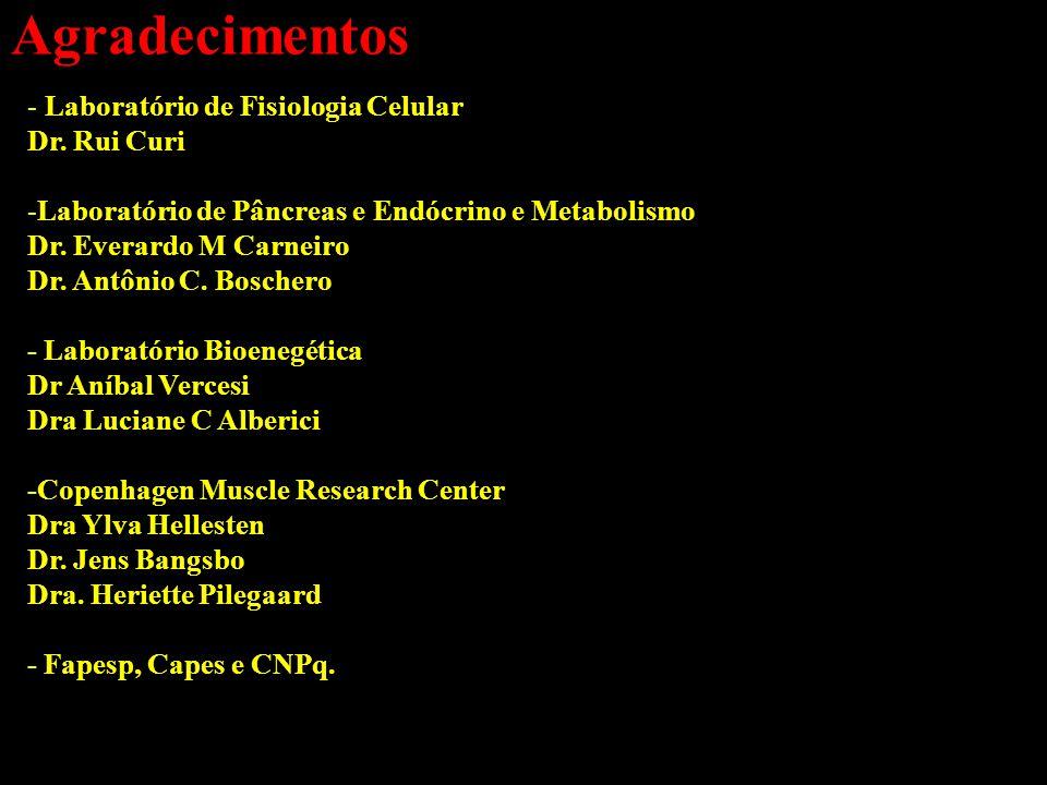 Agradecimentos Laboratório de Fisiologia Celular Dr. Rui Curi