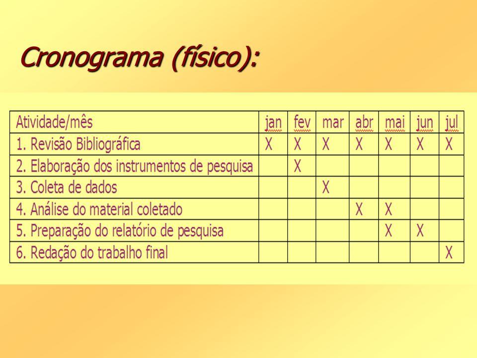 Cronograma (físico):