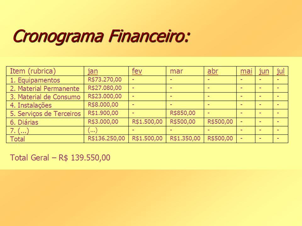 Cronograma Financeiro: