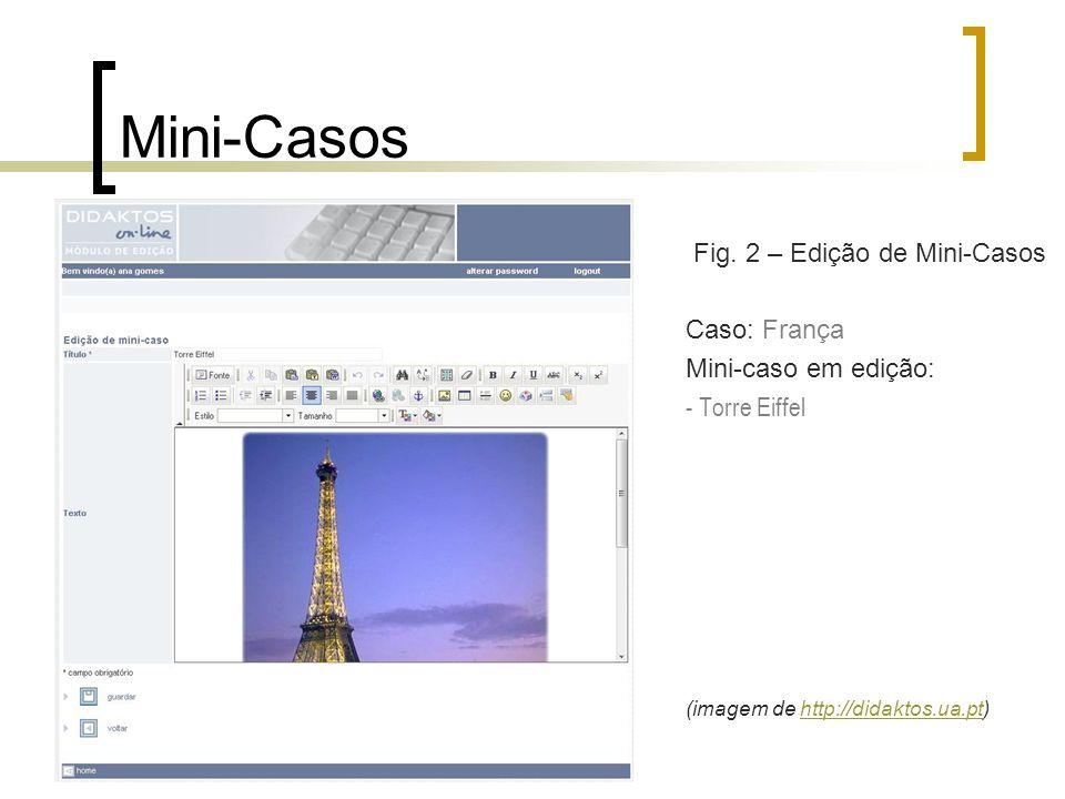 Fig. 2 – Edição de Mini-Casos