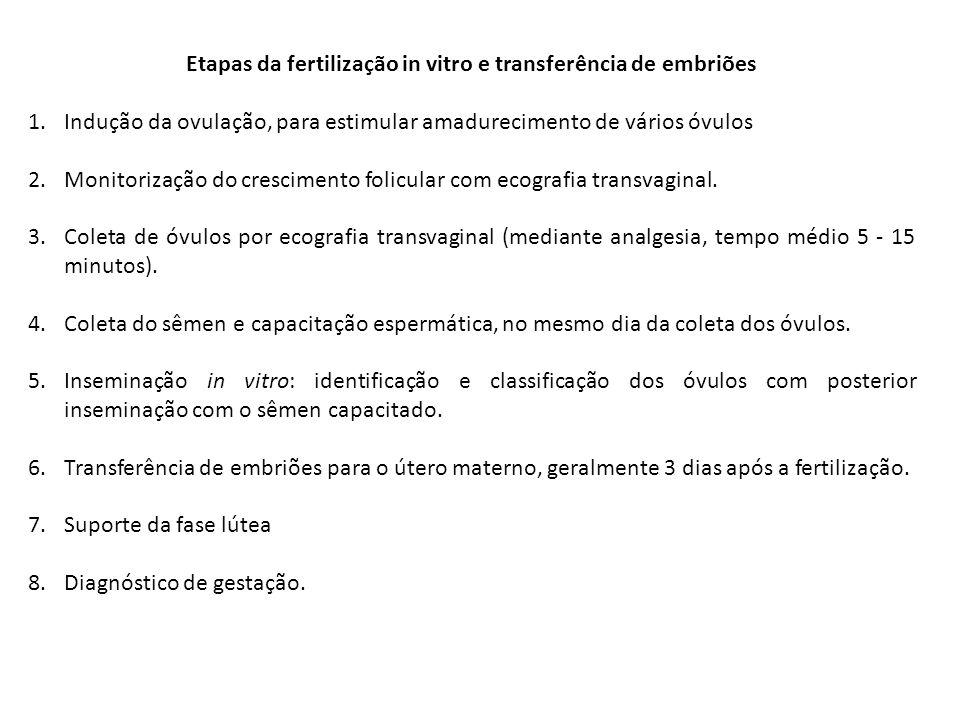 Etapas da fertilização in vitro e transferência de embriões