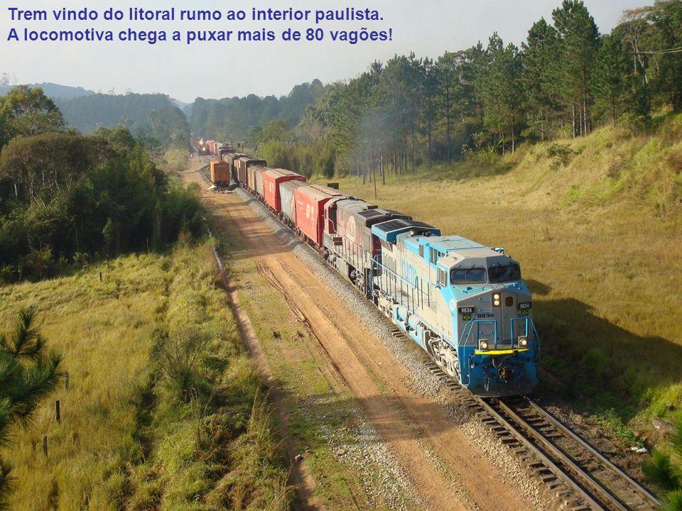 Trem vindo do litoral rumo ao interior paulista.