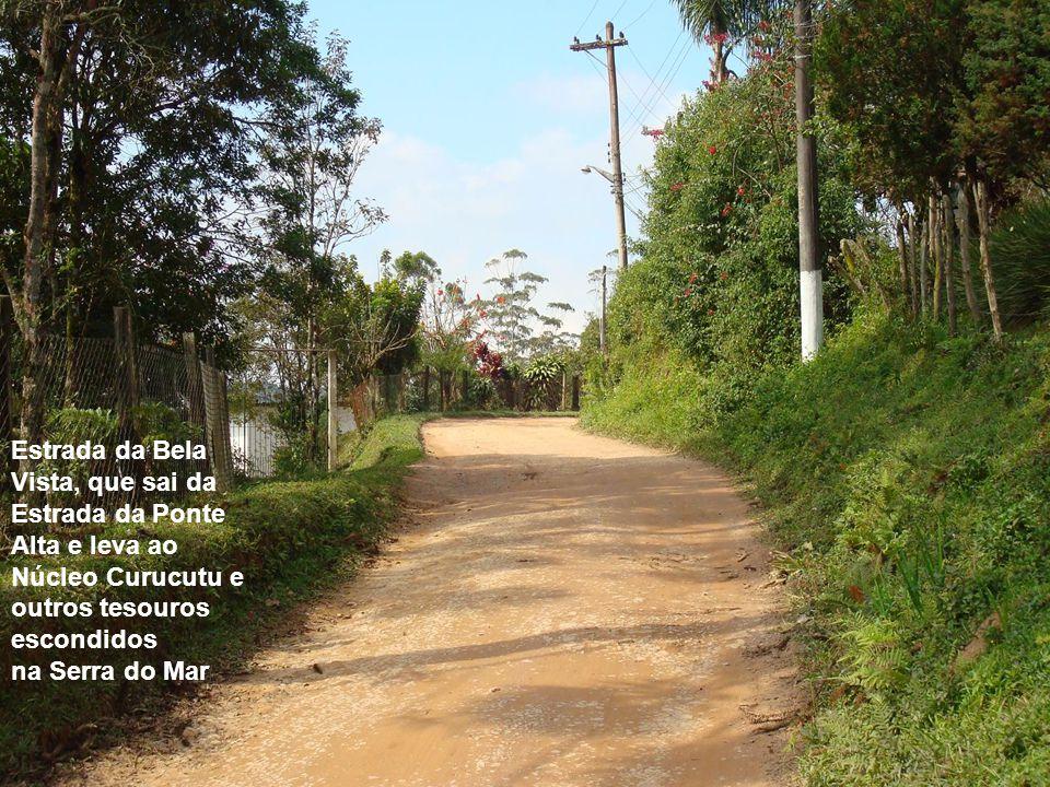 Estrada da Bela Vista, que sai da Estrada da Ponte Alta e leva ao Núcleo Curucutu e outros tesouros escondidos