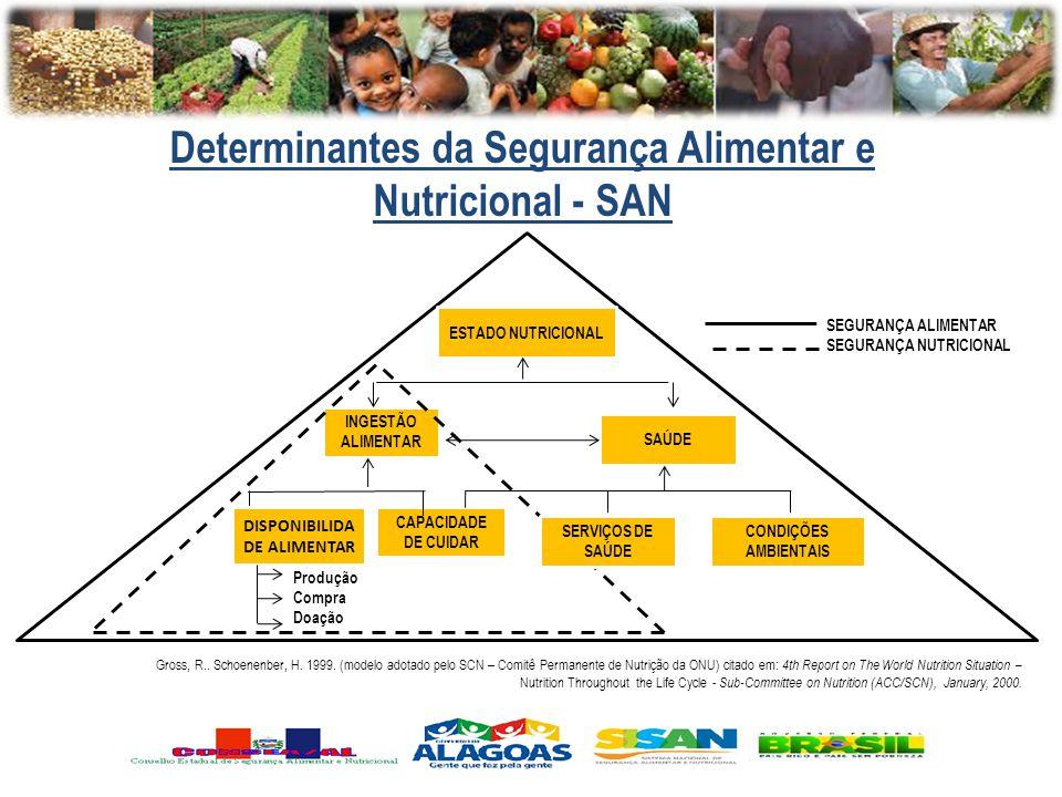Determinantes da Segurança Alimentar e DISPONIBILIDADE ALIMENTAR
