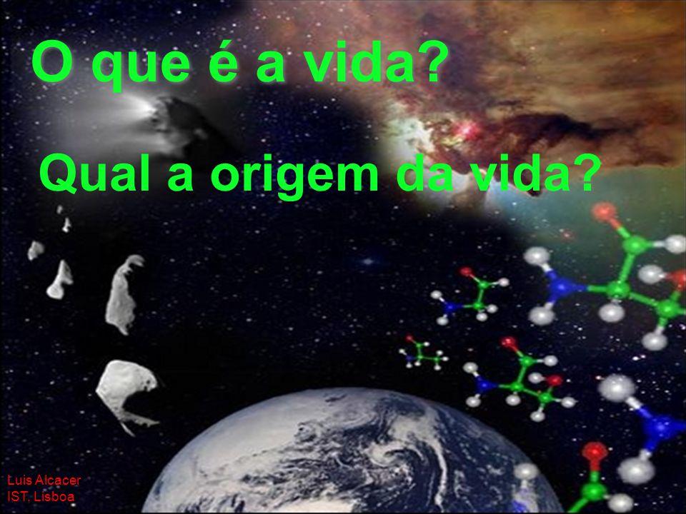 O que é a vida Qual a origem da vida Luis Alcacer IST, Lisboa