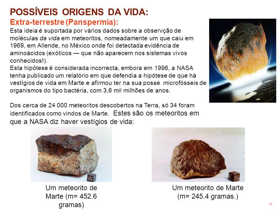 Um meteorito de Marte (m= 452.6 gramas)
