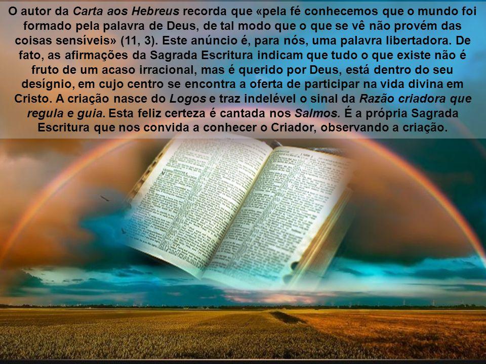 O autor da Carta aos Hebreus recorda que «pela fé conhecemos que o mundo foi formado pela palavra de Deus, de tal modo que o que se vê não provém das coisas sensíveis» (11, 3).