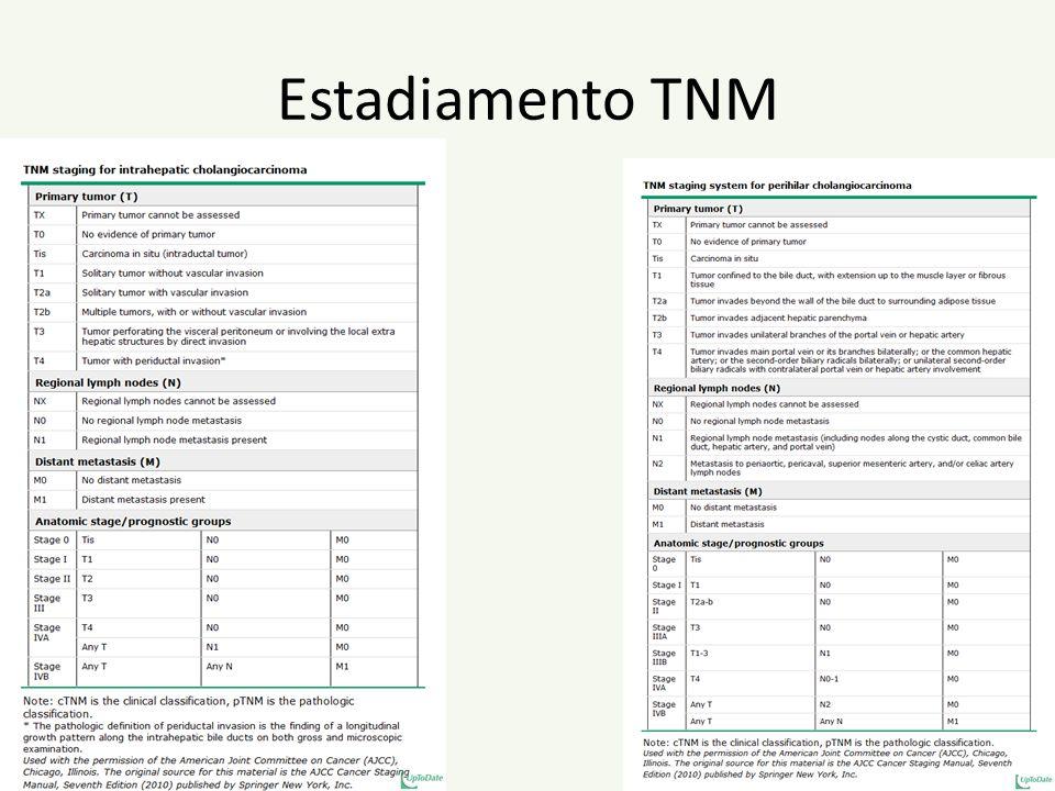 Estadiamento TNM