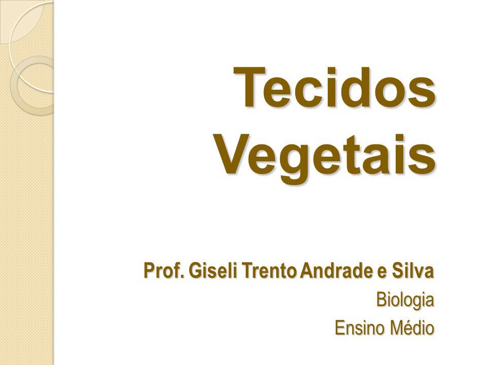 Prof. Giseli Trento Andrade e Silva Biologia Ensino Médio
