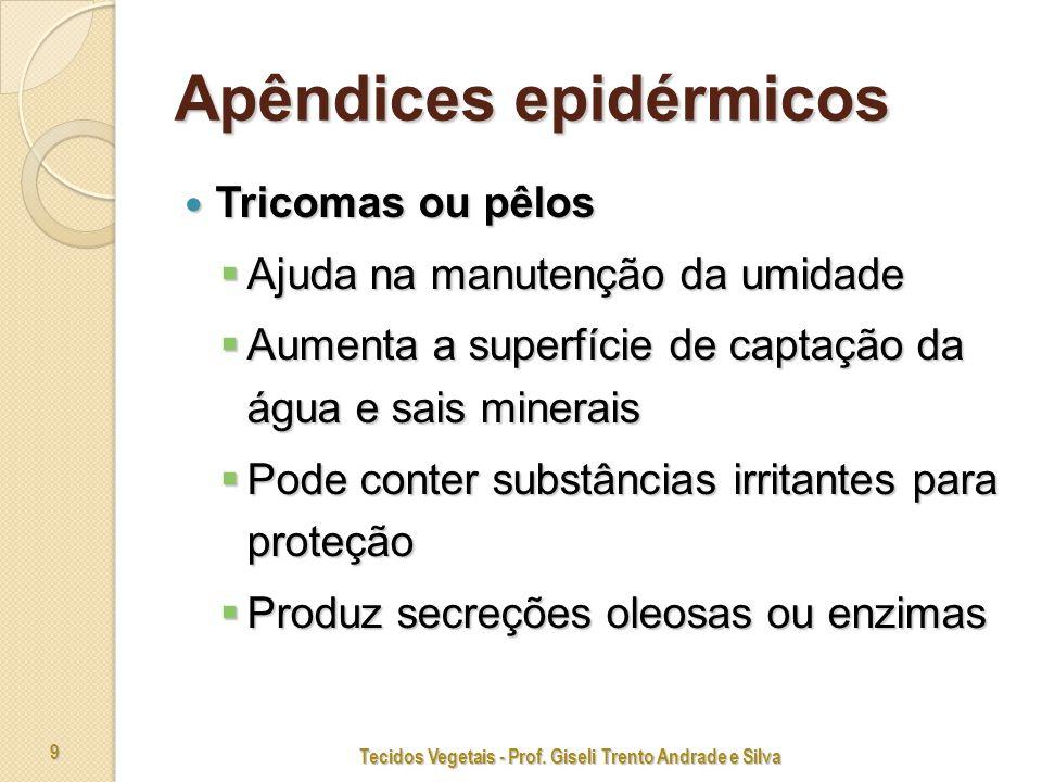 Apêndices epidérmicos
