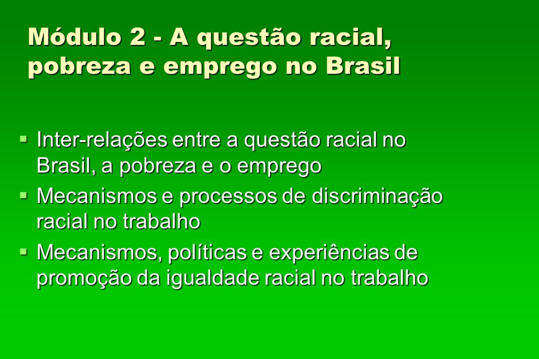 Módulo 2 - A questão racial, pobreza e emprego no Brasil