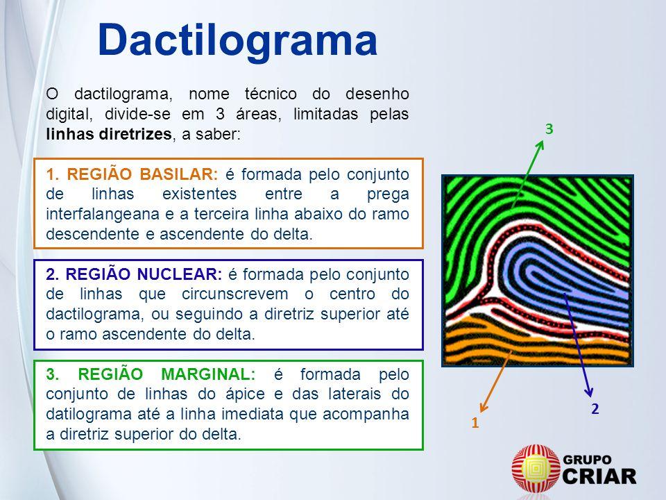 Dactilograma O dactilograma, nome técnico do desenho digital, divide-se em 3 áreas, limitadas pelas linhas diretrizes, a saber: