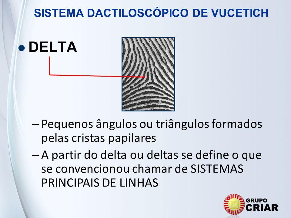 DELTA Pequenos ângulos ou triângulos formados pelas cristas papilares