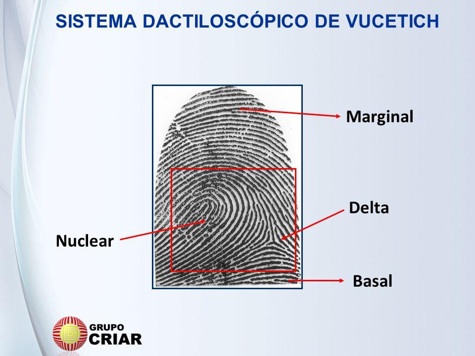 SISTEMA DACTILOSCÓPICO DE VUCETICH