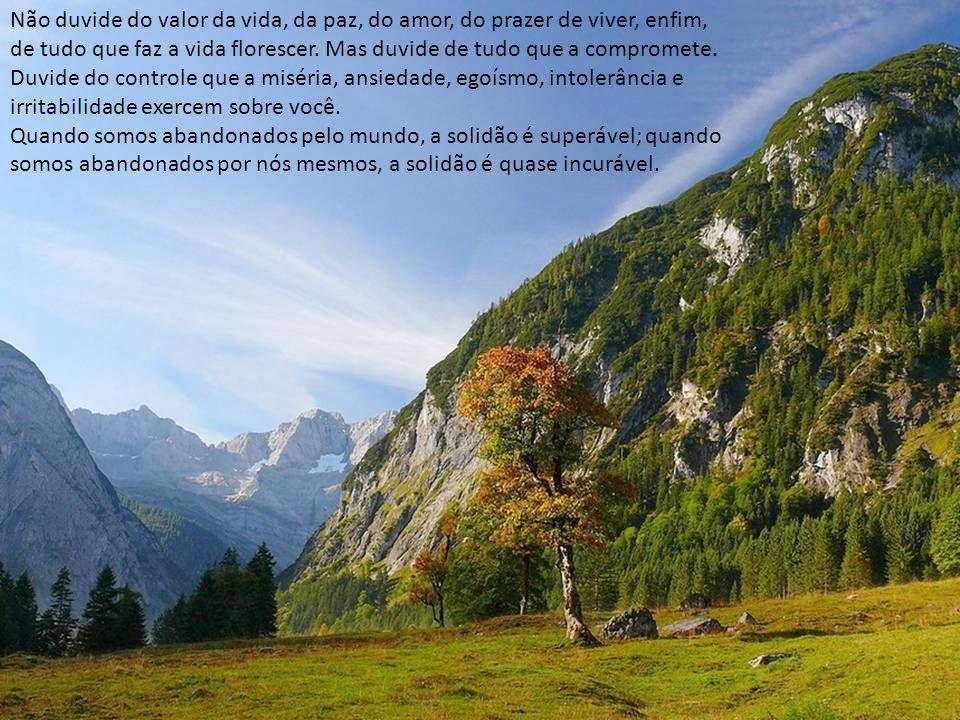 Não duvide do valor da vida, da paz, do amor, do prazer de viver, enfim,