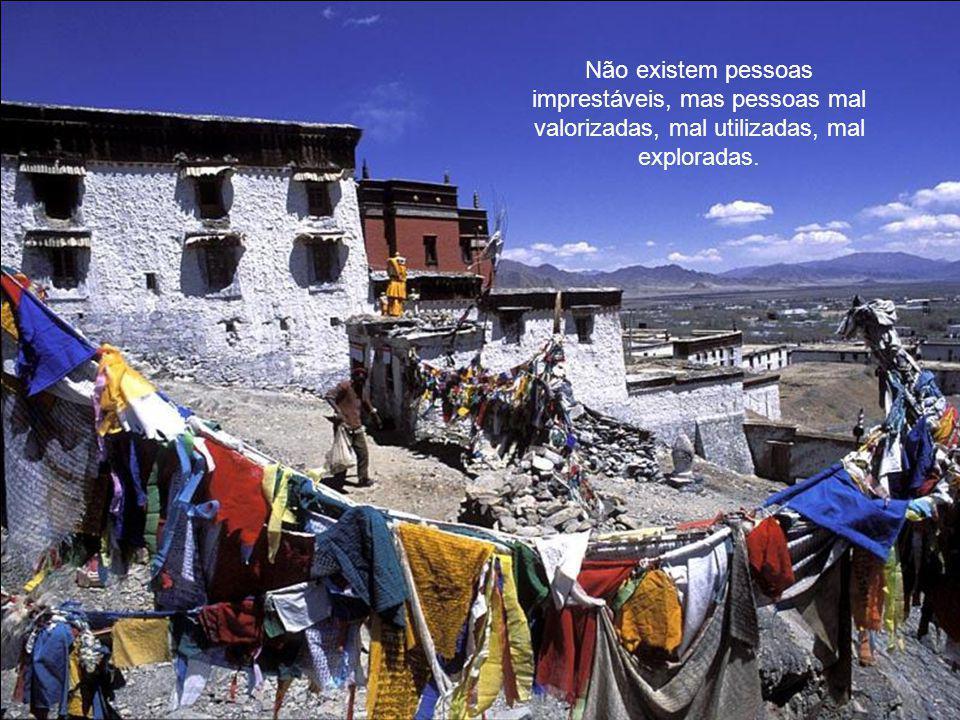 Não existem pessoas imprestáveis, mas pessoas mal valorizadas, mal utilizadas, mal exploradas.