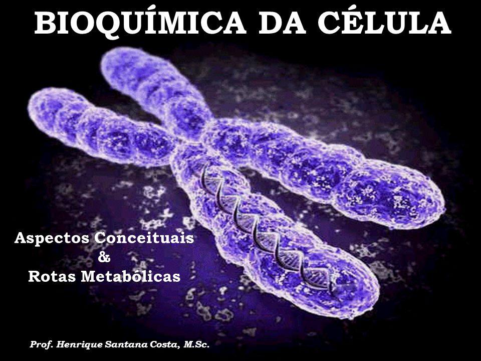 BIOQUÍMICA DA CÉLULA Aspectos Conceituais & Rotas Metabólicas