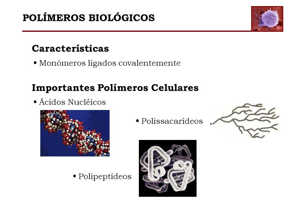 Importantes Polímeros Celulares