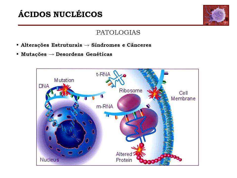 ÁCIDOS NUCLÉICOS PATOLOGIAS