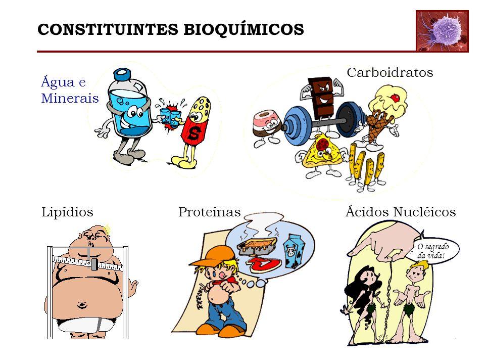 CONSTITUINTES BIOQUÍMICOS