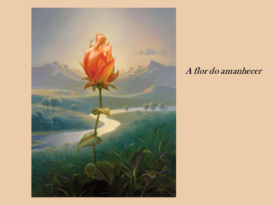 A flor do amanhecer
