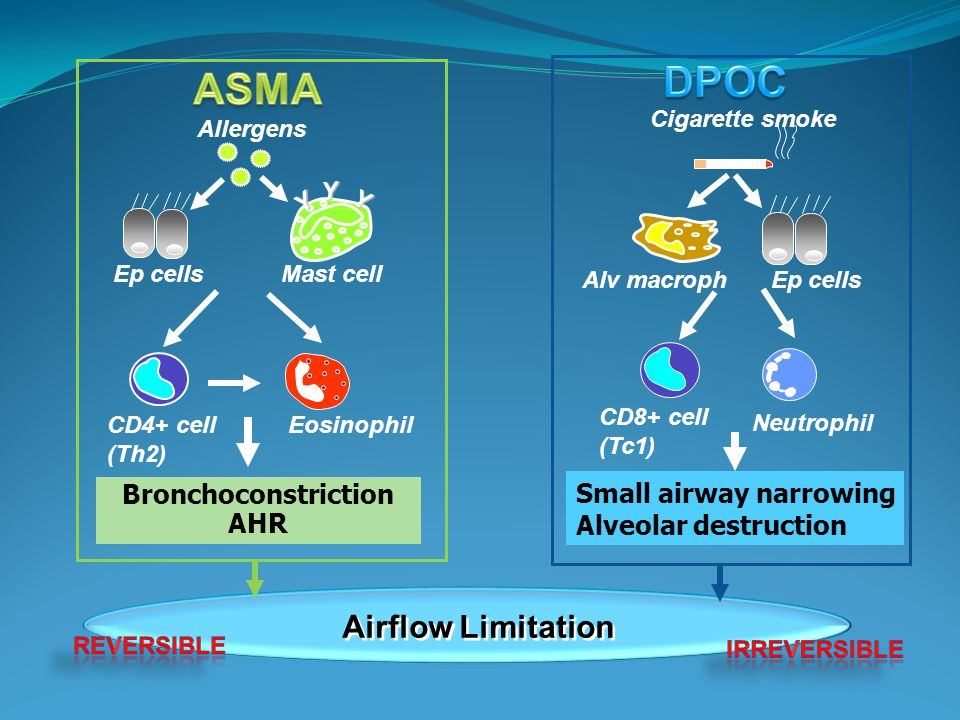 DPOC ASMA Airflow Limitation Small airway narrowing
