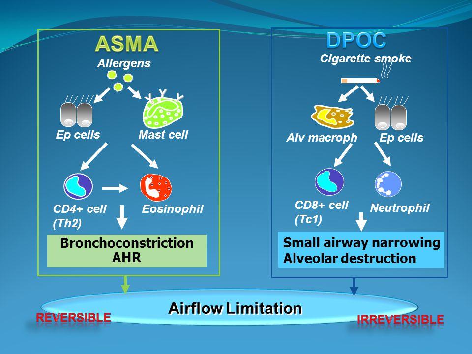 DPOC ASMA Airflow Limitation Small airway narrowing