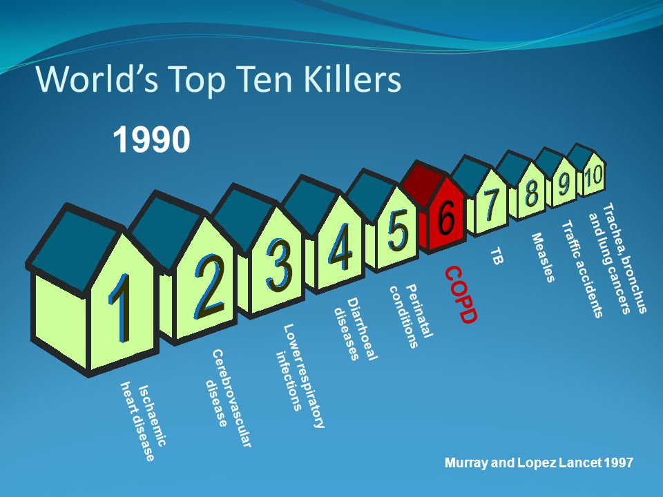 World's Top Ten Killers