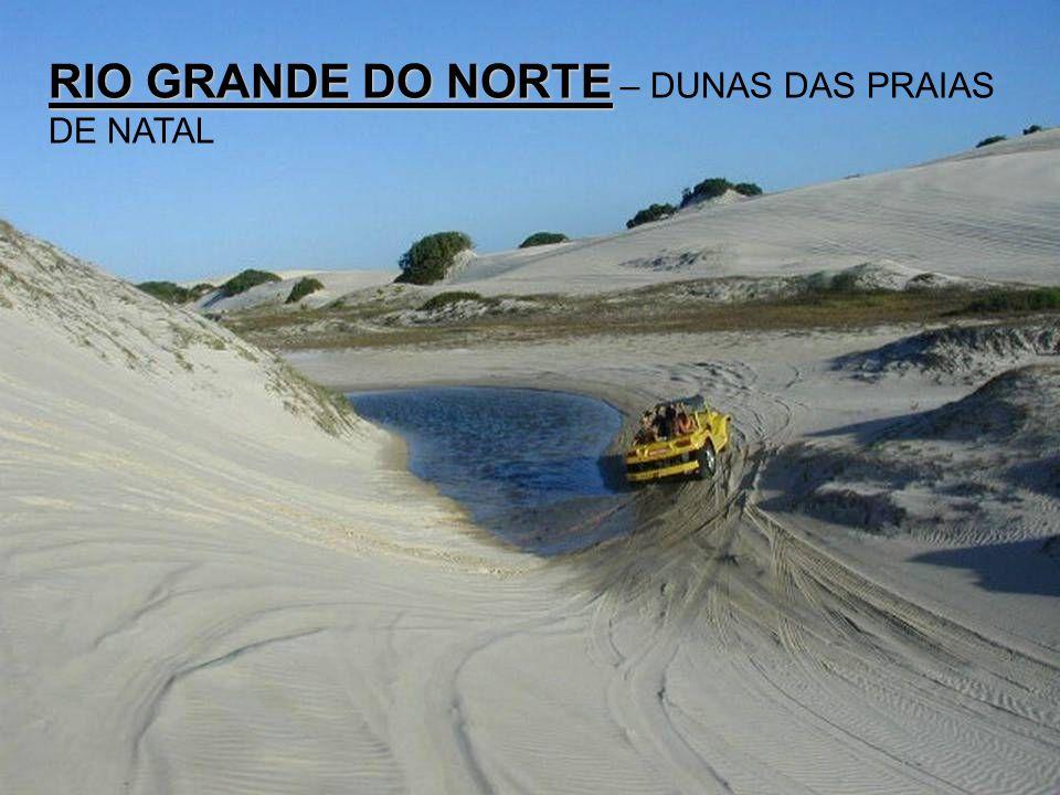 RIO GRANDE DO NORTE – DUNAS DAS PRAIAS DE NATAL