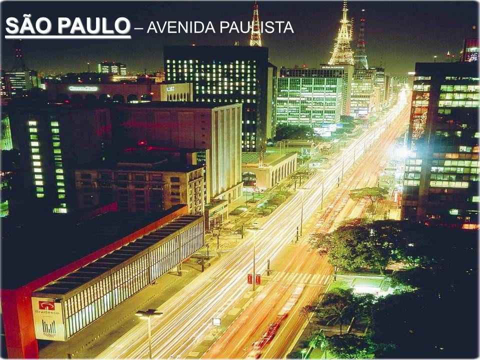 SÃO PAULO – AVENIDA PAULISTA