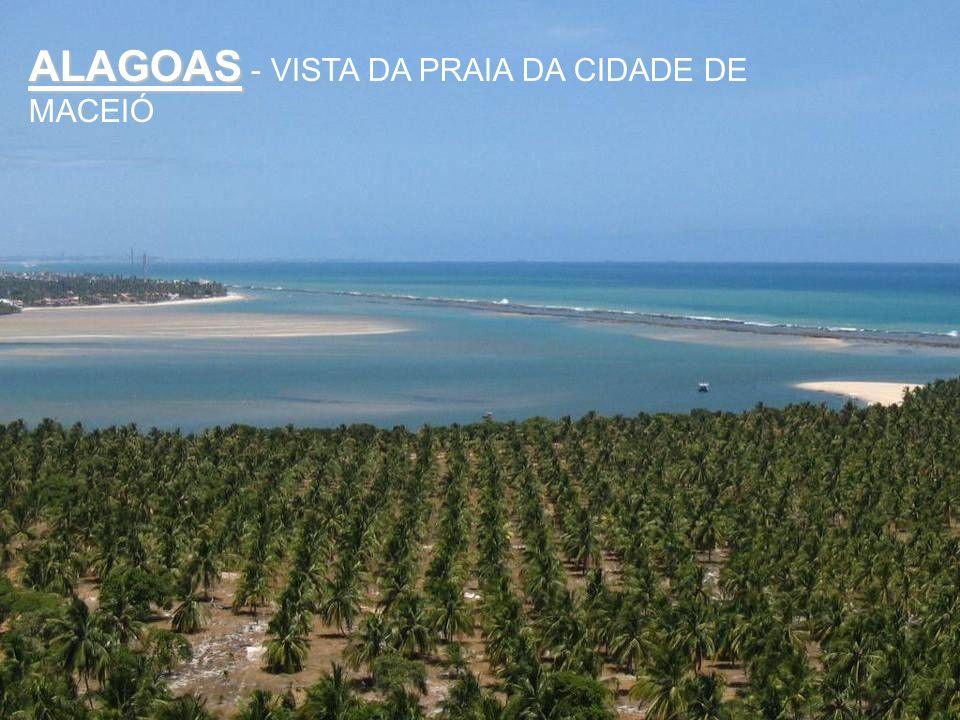 ALAGOAS - VISTA DA PRAIA DA CIDADE DE MACEIÓ