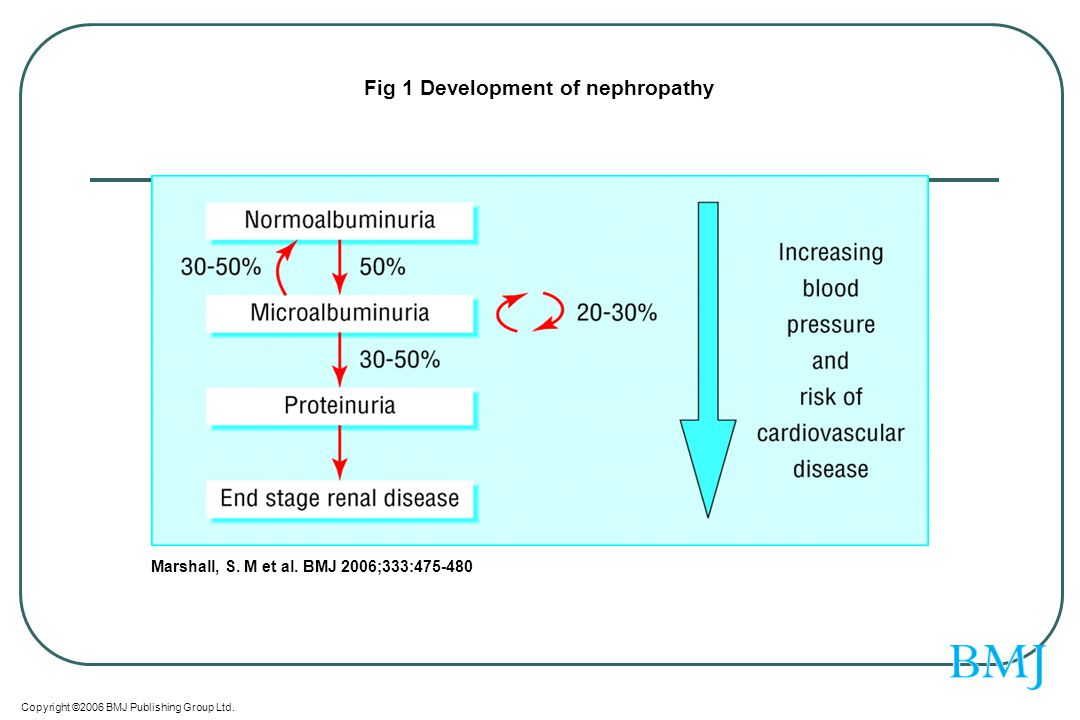 Fig 1 Development of nephropathy
