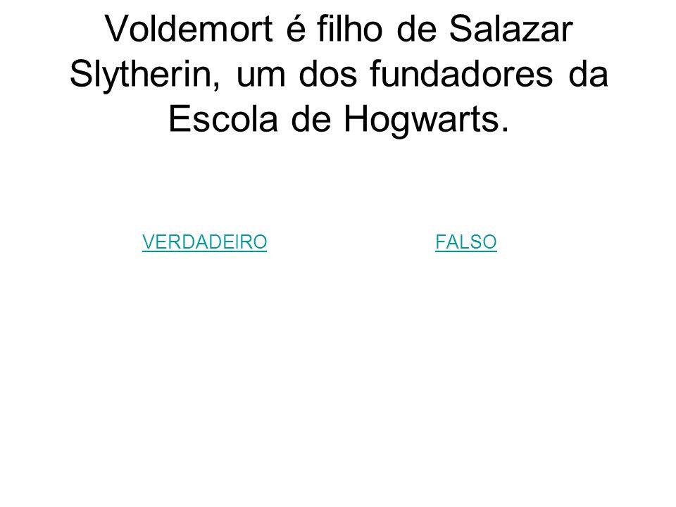 Voldemort é filho de Salazar Slytherin, um dos fundadores da Escola de Hogwarts.