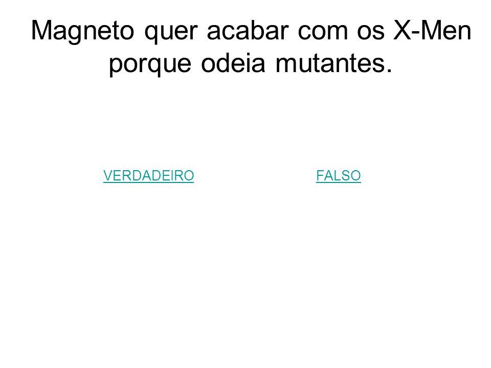 Magneto quer acabar com os X-Men porque odeia mutantes.