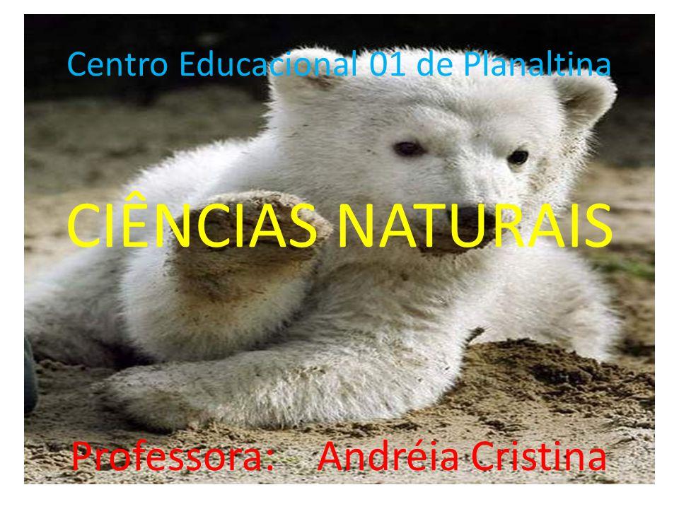 Centro Educacional 01 de Planaltina