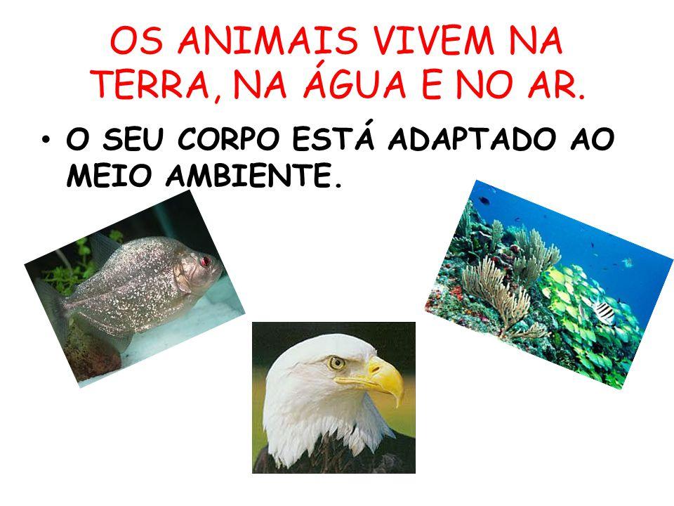 OS ANIMAIS VIVEM NA TERRA, NA ÁGUA E NO AR.