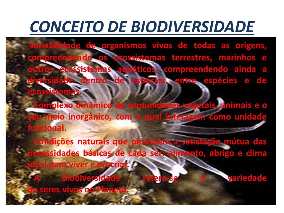 CONCEITO DE BIODIVERSIDADE